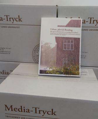 PhD thesis, Johanna Sörensen